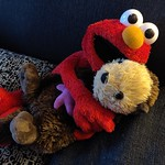 *OF COURSE* Elmo loves otters!