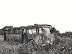 old forgotten bus