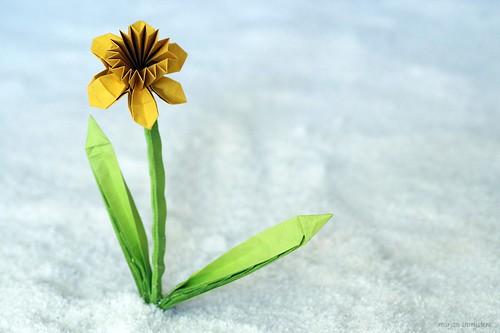 Origami Daffodil (John Richardson)