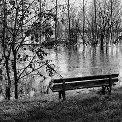 Le banc pieds dans l'eau - Photo of La Vergne
