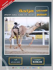 صور أشواط الحقايق العامة بالمحلي السابع (صباح) ١٣-٢-٢٠٢٠