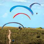 Paragliding at the downs by Derek Dewey-Leader
