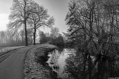 Le long du canal de la Bruche. Alsace