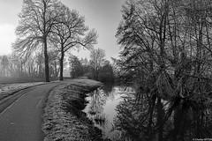 Canal de la Bruche ECKBOLSHEIM Février 2020