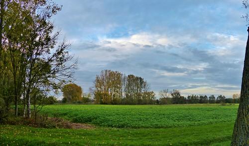 Nederzwalm - Schelde 12 - Panorama