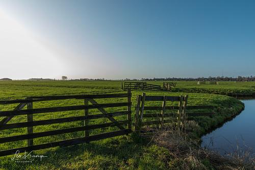 Meadows in the Dutch Polder