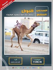 صور أشواط اللقايا العامة بالمحلي السابع (صباح) ١٤-٢-٢٠٢٠
