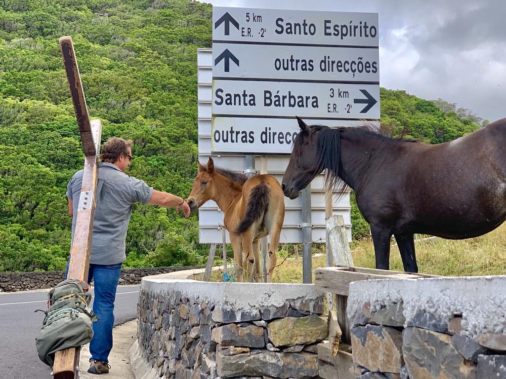 Azores Image36