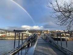 Lake Union Park Bridge with Rainbow