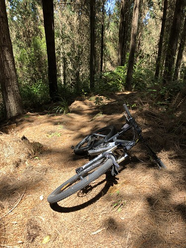 On a mtb bike in Taupo
