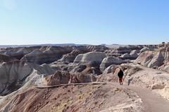 Begin descend on Blue Mesa trail