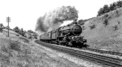 Purchased Black and White Railway Images