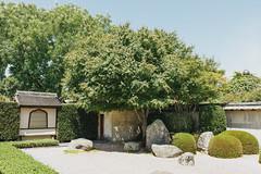 Japanese Garden of Contemplation