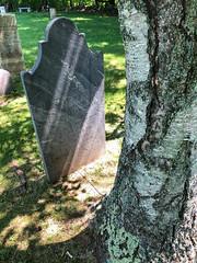 Captain William Spear: Tolman Cemetery, Rockland, Maine