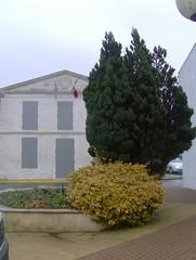 201012_0050 - Photo of Saint-Ouen-d'Aunis
