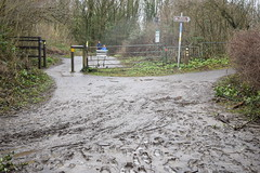 Once the water has done down the mud is still in place - Storm Dennis in Tongwynlais