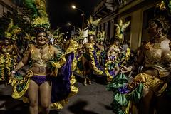 Desfile de Llamadas 2020 - Barrio Sur - Montevideo - Uruguay | 200214-0003660-jikatu