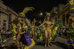 Desfile de Llamadas 2020 - Barrio Sur - Montevideo - Uruguay | 200214-0003665-jikatu