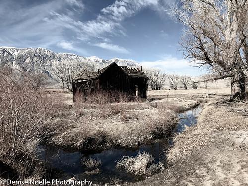 Owens Valley 102