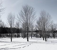 Manotick, Ontario