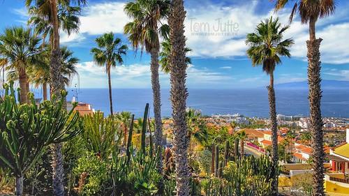 View over Cacti garden and Costa Adeje, Tenerife, Spain - 3192