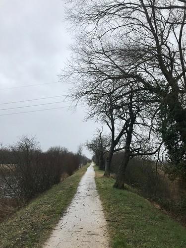 Rainy day easy spin