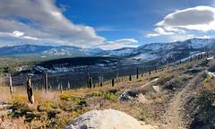Christmas Valley, South Lake Tahoe, CA