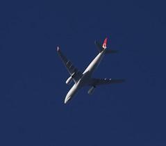 Turkish Cargo Airbus A330-243F FL100 TC-JDS TK6203 THY6203 IST-STN