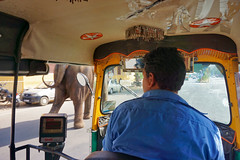 India, Jaipur - Priority to heavy vehicle coming from the left - February 2018