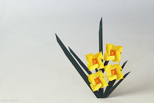 Origami Daffodil (Tomoko Tanaka)