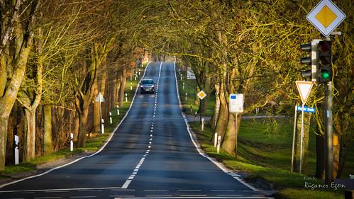 Gingster Straße in Samtens