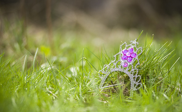 Photo:Jewel of the grass By The lens profile