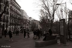 014099 - Madrid