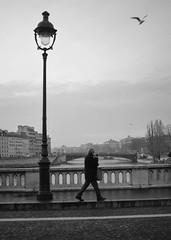 Paris in january