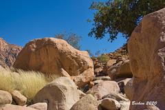 DSC06353 Namibia L4