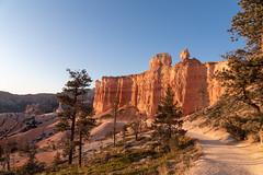 Morning Light on Trailside Rock Face