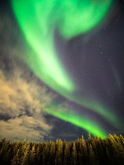 Northern Lights - Narvik, Norway - Travel photography