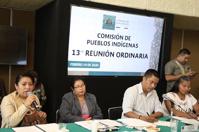 19/02/2020 Comisión de Pueblos Indígenas