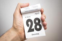 28. April – Tag des Blaubeerkuchens