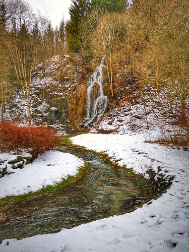 Fall and Creek