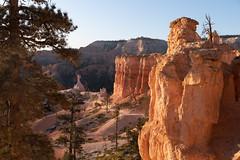 Trail Side Rock Walls