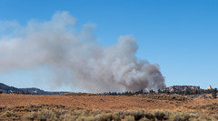 Controlled Burn in the Distance