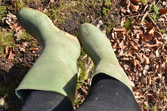 353 -- Hevea Acifort wellies with yellow sole -- Bottes Hevea acifort avec semelle jaune -- Acifort Gummistiefel