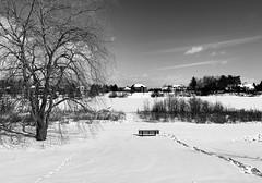 Manotick/Ottawa, Ontario
