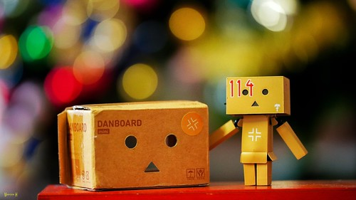 Danbo and his Box - 8108