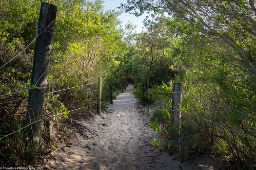 Pathway to Jimmys Beach
