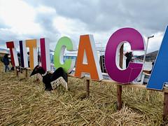 Titicaca Sign