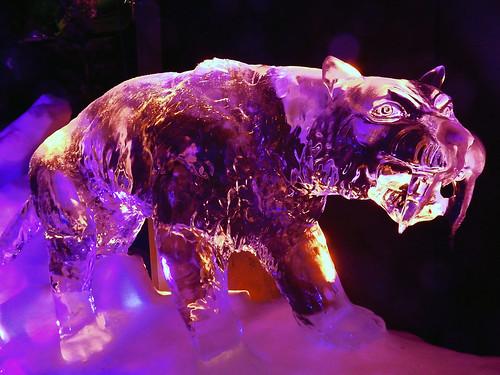 Ice Sculpture Festival; saber-toothed tiger (N4451)