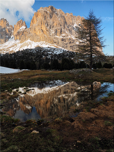 Reflections in the pond on the Sellajoch in South Tyrol