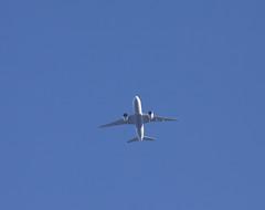 Turkish Cargo Boeing 777-FF2 TC-LJO FL80 ADB-STN TK6201 THY6201